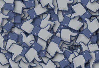 Facebook política